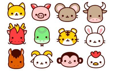 Apprendre les noms d'animaux en chinois : vocabulaire pratique