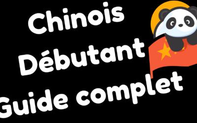 Cours d'initiation à la langue chinoise – Bien débuter l'apprentissage du mandarin